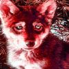Alone wolf cub puzzle