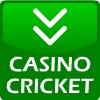 Casino Cricket
