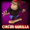 Circus Gorilla