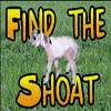 Find the Shoat