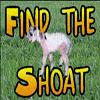 Find the Shoat v1.1