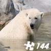Jigsaw: Polar Bear 2
