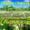 Magic Springs Hidden Objects