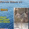 Puzzle Mania v2 - Zebra