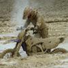 Super hyper extreme motocross